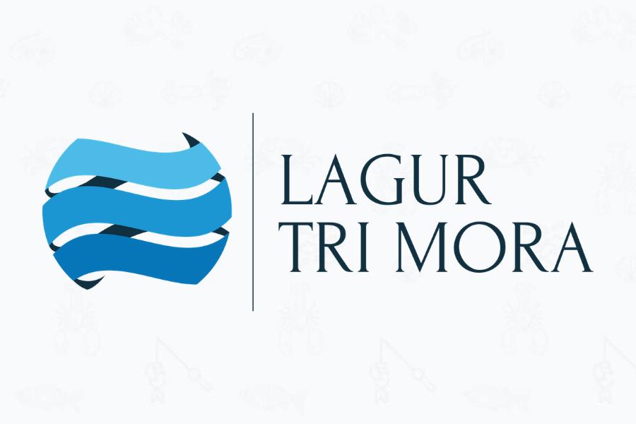 """Javni natječaj za prijem u radni odnos u Lokalnu akcijsku grupu u ribarstvu """"Tri mora"""""""